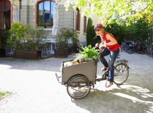 Città con più bici e meno auto? Più sane e... più benestanti!