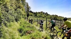 Il 2019 è l'anno del turismo lento. E la bicicletta deve essere la protagonista
